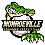 Monroeville 11u Baseball Team raised $865 over the weekend selling Jose Madrid Salsa & PopsyCakes! #Fundraiser $UPZS https://t.co/t8kjXP6V9o