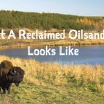 Fact: In 50 years of development, 0.7% of the #Oilsands land area has been mined, and all land must be reclaimed. https://t.co/9HrRSUhw6P