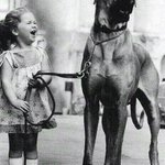 """The #1960s, a #dog... #Love! Some things never change. """"Highly recommend!"""" #99c #asmsg #cr4u https://t.co/kZRwENE7y2 https://t.co/3cUGuy5PB7"""