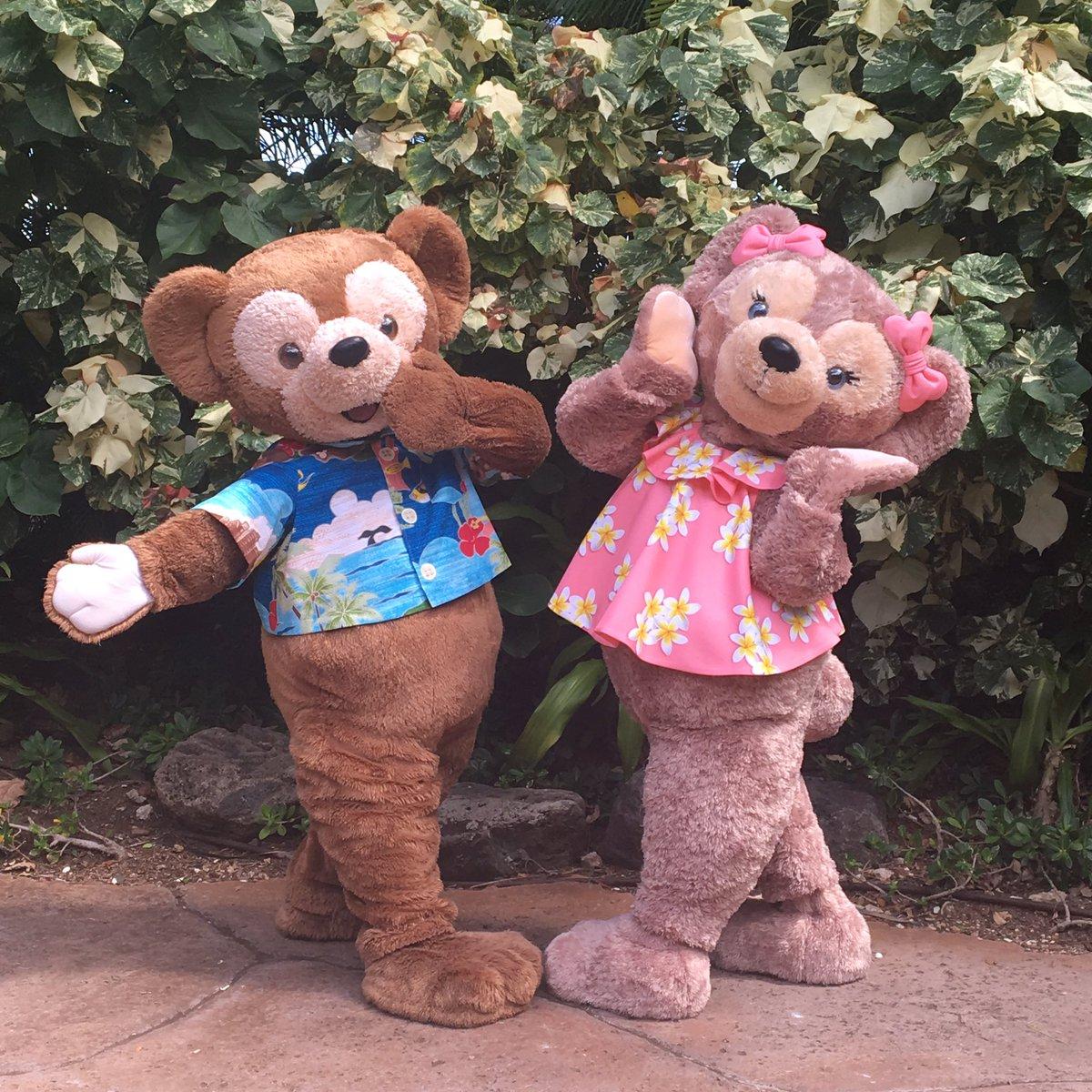 今日から仲間入りしたよ!シェリーメイ #アウラニ @DisneyAulani #ハワイ #ディズニー (ヨリエ,リツコ) https://t.co/LApPvq6XcV