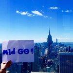 Clap de fin du #MldGO, avec 2 derniers spécimens capturés hier à... #NewYork, USA! #Prémonitoire ;-) https://t.co/1JS6POYzJD