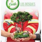 #YoCuido los bosques @CholaCabrera @MunicipioCuenca @catialban @Bomberos_Cuenca @RadioCiudad1017 https://t.co/douLQVRnmR