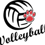 Got some Lady Bulldog VOLLEYBALL today at Home v Foster. F 4:45, JV 5:45, V 6:45p. GO DAWGS! @austinvbnews https://t.co/rUCrXupMOT