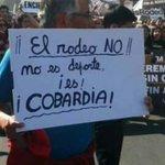 ¡El rodeo No es deporte es, COBARDÍA!  #AltoHospicio #Iquique https://t.co/zvB2q870eK