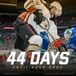 Only 44 more days. #CountdowntoDucktober https://t.co/tN9BtXUMlc