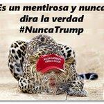 #TNTweeters  .@RepCurbelo  El partido anti inmigrante No ganara las elecciones Lucharemos con nuestro voto #USlatino https://t.co/wRVxVnyoIL