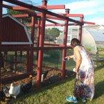 Pump House Urban Agriculture Ctr - herb & community garden, chickens, compost bins & gardening ed talks #Akron2Akron https://t.co/Xhl1kqSQd3