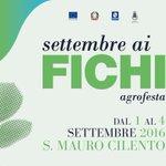 "San Mauro Cilento, ""Settembre ai Fichi"": dall' 1 al 4 settembre mercatini artigianali,… https://t.co/AVSmQv2xfT https://t.co/WBwvl09jZL"