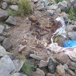 عندما نقول أن الحوثيين يتركون جثث الزنابيل ليس جزافا صحفي يلتقط صور لبقايا جثث حوثية في مواقع حررت قبل أشهر في #تعز https://t.co/tQZvXXq3u9