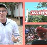 """NEW VIDEO: """"My YouTuber Summer Camp"""": https://t.co/IqRpoQKLRs (RT for a DM full of love & camp emojis!!) https://t.co/VXkkSFm3t9"""