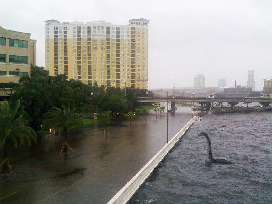 Drive Safe Tampa #Hermine https://t.co/vpqxPMjNZs