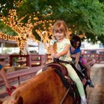 #LosAngeles County Fair Sept 2 - 25 @ Fairplex, Pomona *Rides, Food, Concerts, Animals, Fun+ https://t.co/AWmoJMvLrP https://t.co/CLxuzqZlls