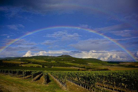 test Twitter Media - The Bucket List: A Guide to the World's Major #Wine Regions https://t.co/a48wPcQbcw #wineoclock #winelovers https://t.co/8521h8RS4y