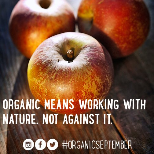 By switching to Organic you will reduce your exposure to potentially harmful pesticides #OrganicSeptember https://t.co/xyUnEBTmPc