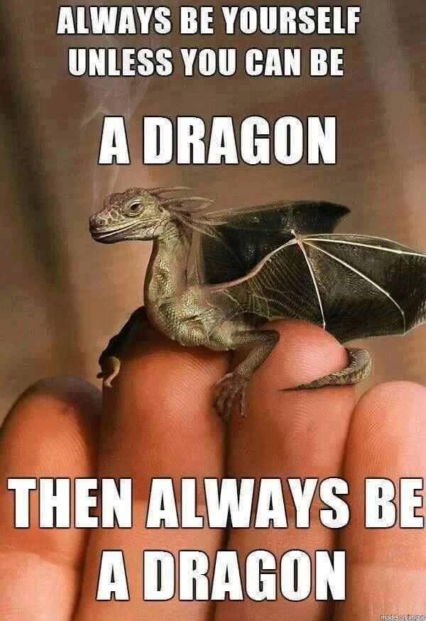 Always be a #Dragon XO https://t.co/PiKGk5Bz4K