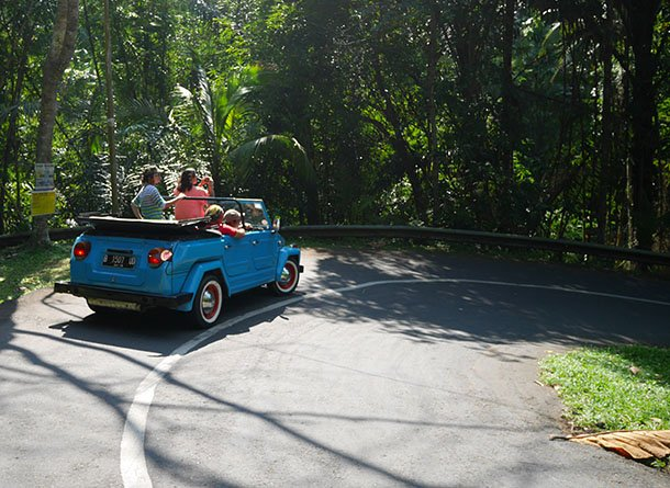 If you're off to Bali and want to have a look around rent a vintage VW jeep and driver! https://t.co/6Er5yjujA9 https://t.co/eT6tUHtDqs