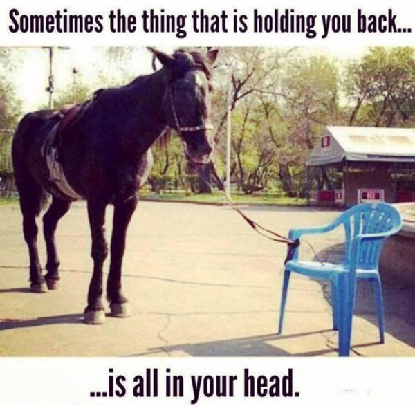 """""""Sometimes the thing that is holding you back is all in your head."""" #quote https://t.co/q460NQtKjG"""