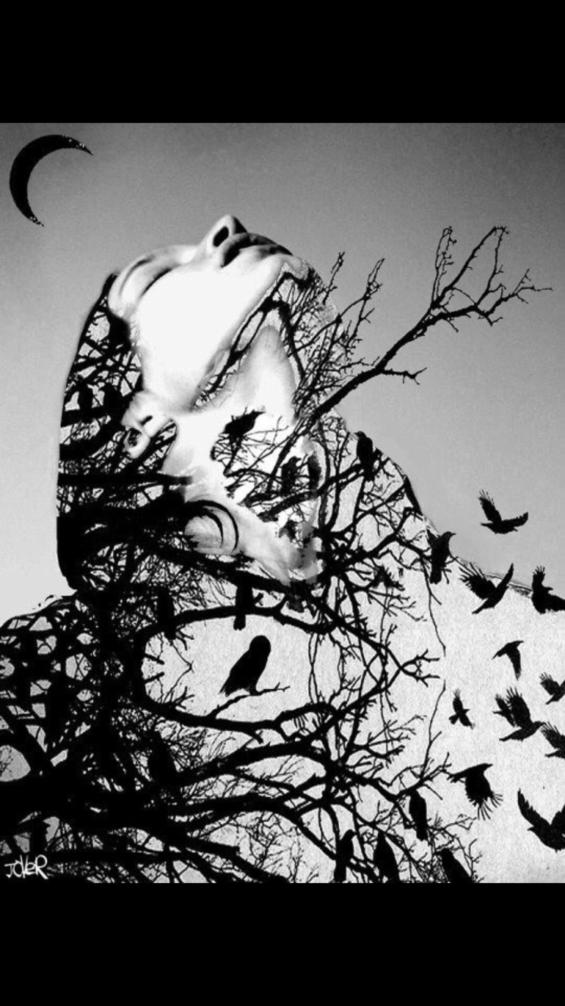 She sparkles  Like moon &  Fades like night You read her  But you don't know How she survives  #darklines #amwriting https://t.co/xH01j1vpML