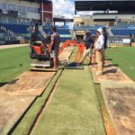 Sod installation underway at Blue Wahoos Stad. Making a great surface even better at last 4 @UWFFootball home games. https://t.co/DHwMisQnNz