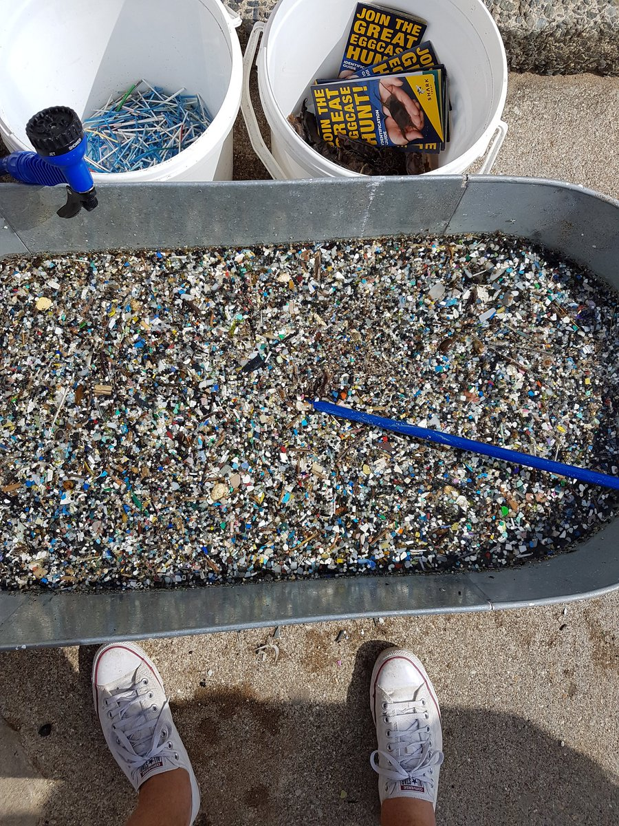 Sweep the strandline. Fill 2 buckets. Wash so it separates sand from plastic. Be shocked. #2minutebeachclean https://t.co/aVcxrnAiif