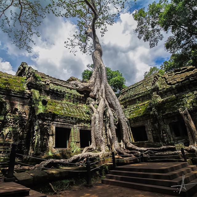 Ta Prohm, Cambodia | Photography by ©Esc Photos https://t.co/hGcXJk4MaR