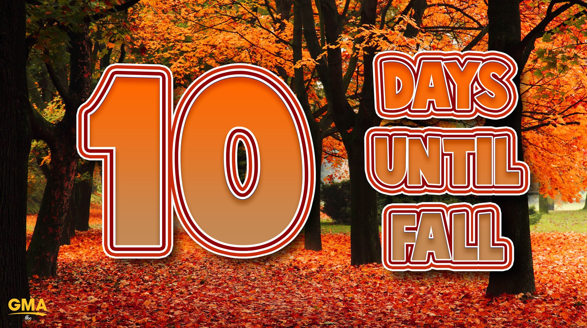 �� �� ONLY 10 DAYS UNTIL FALL �� �� https://t.co/rXSUqCqOKQ