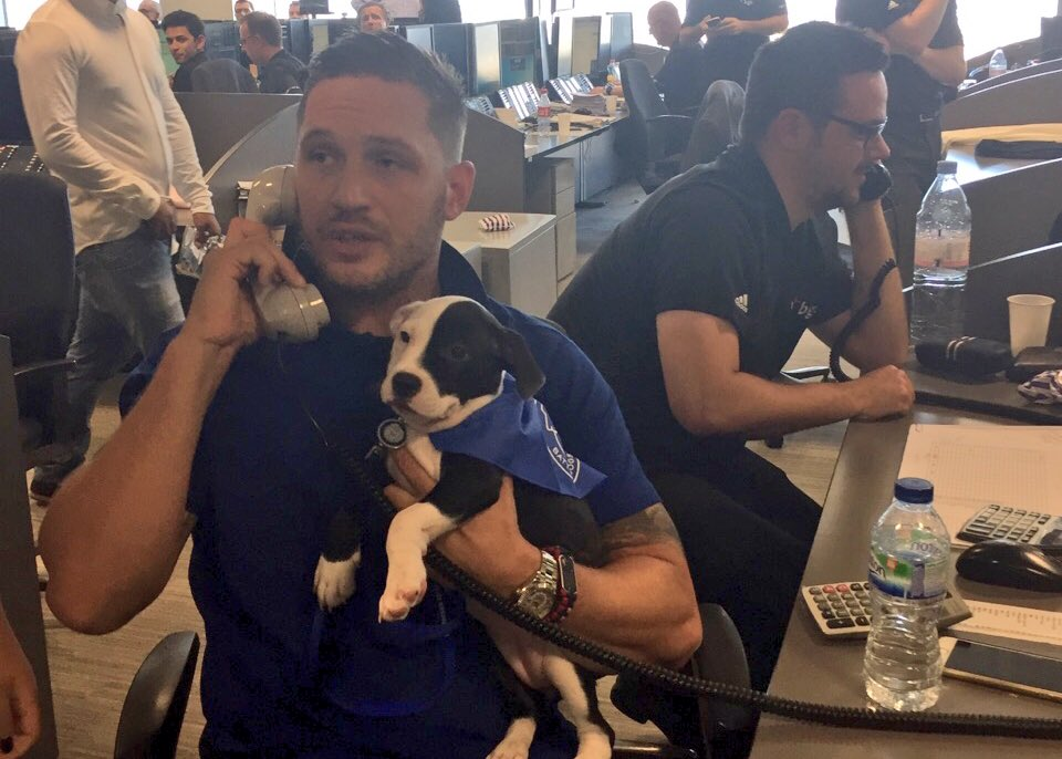 #TomHardy and Wilson hit the trading floor today at #BGCCharityDay to help raise money for #Battersea dogs & cats