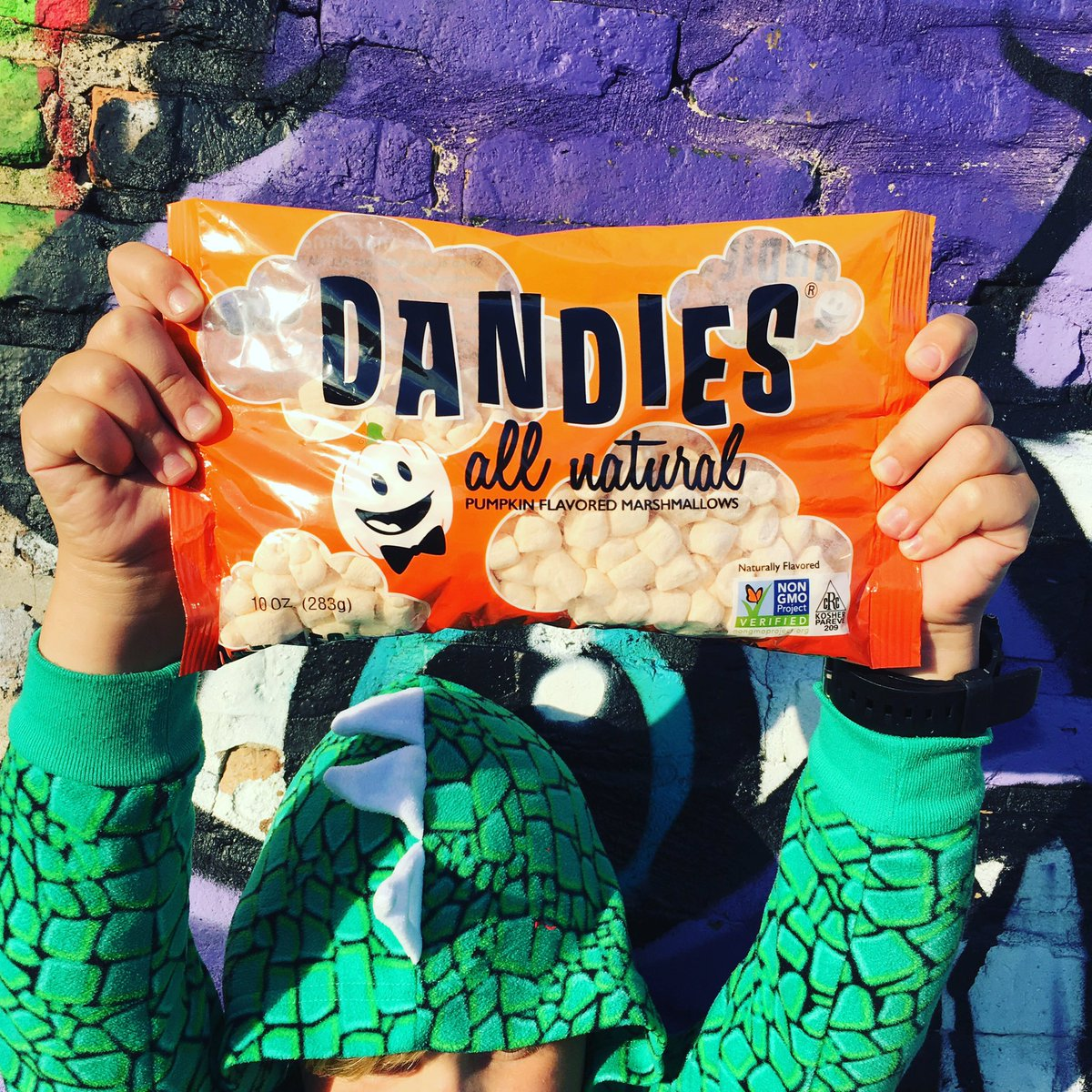 Retweet this pic of Lizard boy with a bag of Pumpkin Dandies for a chance to win a bag for yo' self! https://t.co/zhtVIcSDvz