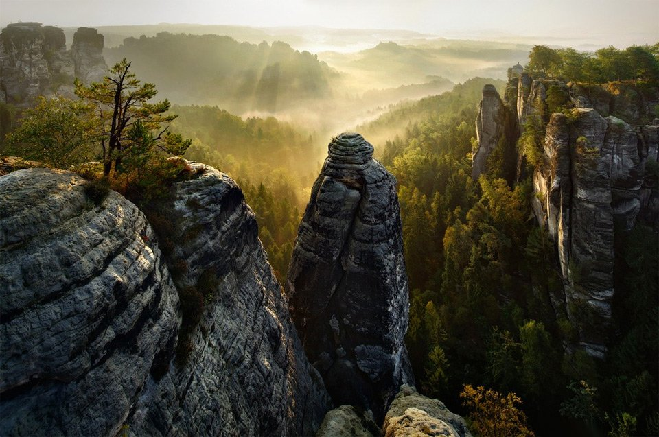 Rock Forest, Germany | Photography by ©Kilian Schönberger https://t.co/6AvFoXNerA
