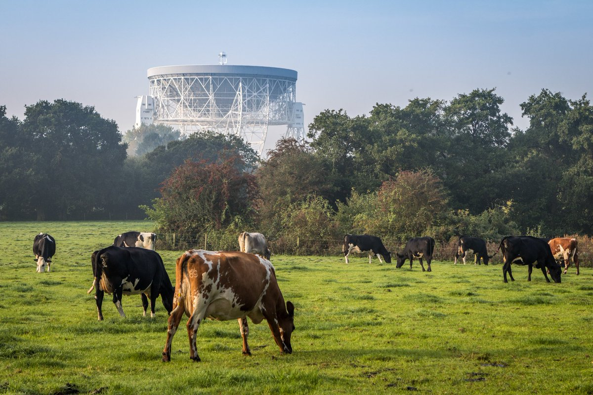 The only good thing about massive traffic jams today was finding a way around and taking a picture of @jodrellbank https://t.co/DHhnCjNR0s