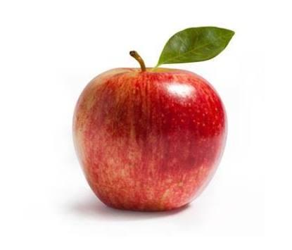 ハロウィンと言えばカボチャだが、それは19世紀末にアメリカで定着したイメージ。本場アイルランドではハロウィンのシンボルはリンゴで、ちょうどこの季節に実をつける魔法の果実。https://t.co/MCC2A5zLz1 #考花学 https://t.co/009BQvNJop