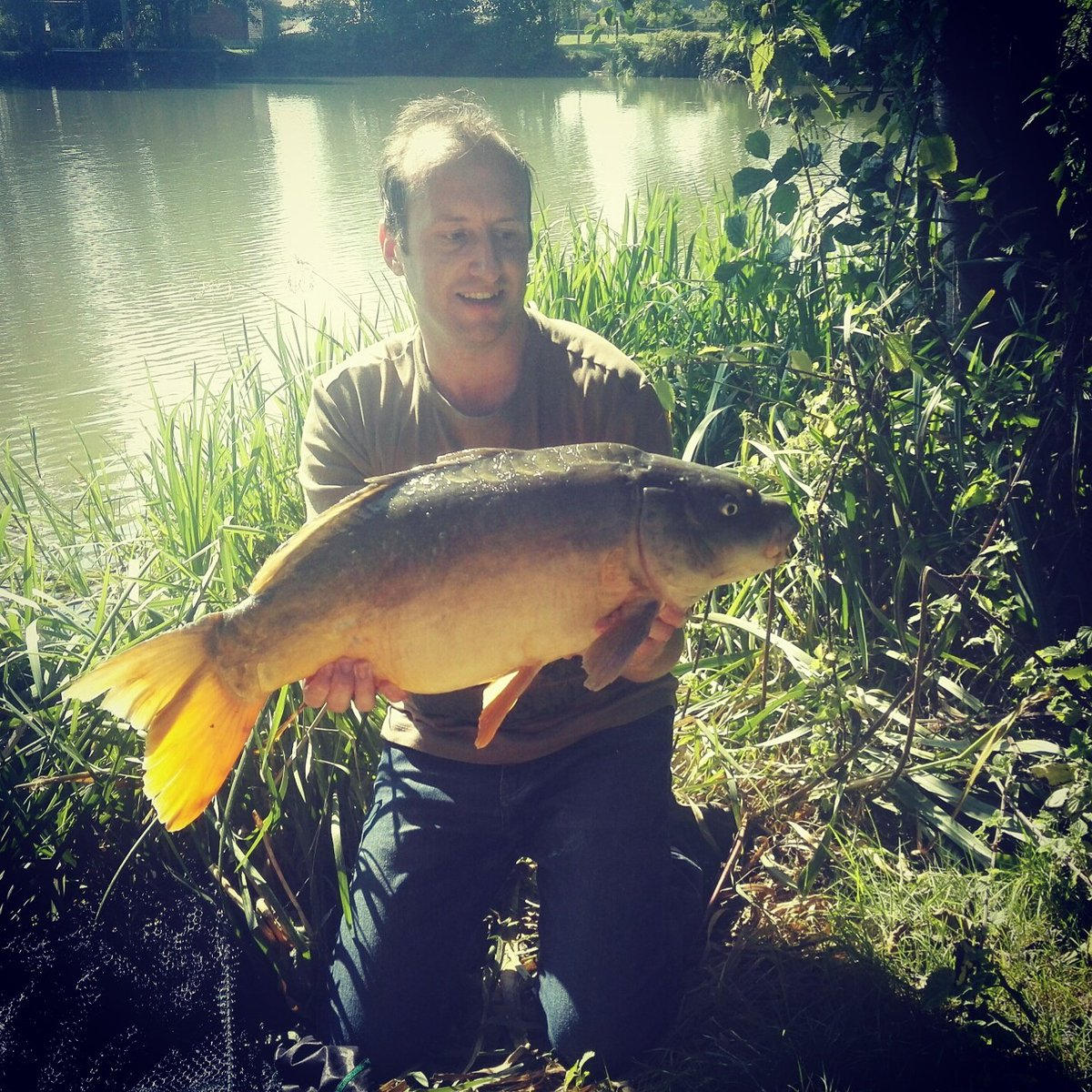 #CarpFishing #MirrorCarp 18lb #TightLines @StickyOfficial #TheKrill https://t.co/OHi16hu5HN