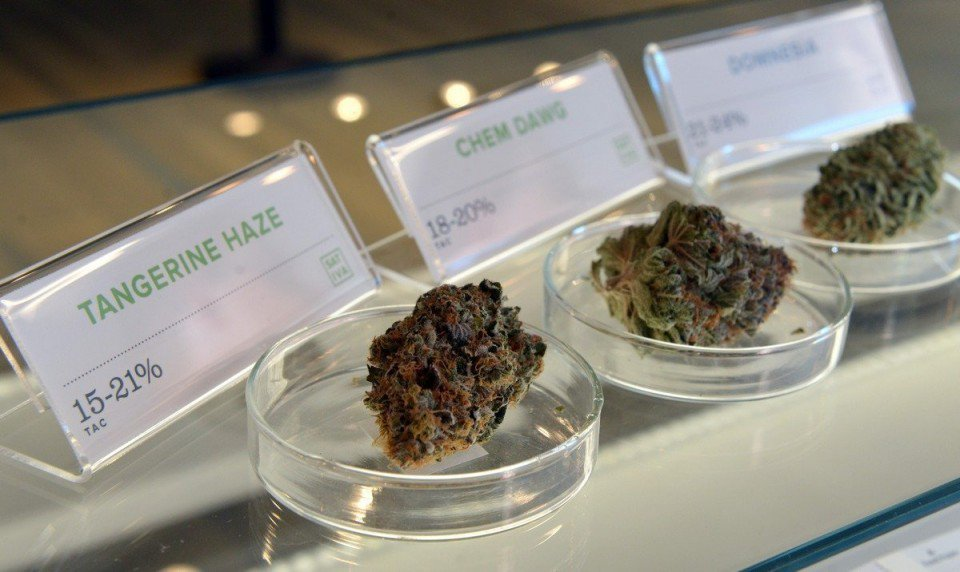 open medical marijuana delivery service full