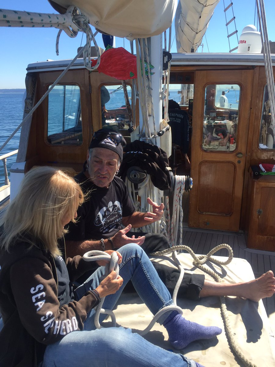 RT @SeaShepSeattle: Practicing knot tying on the Martin Sheen as we approach Seattle! Ship tours 10am-5pm Th-Su, SHARE with friends! https:…