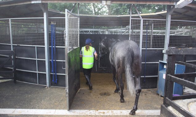 Stable Staff (full time) required to join @PFNicholls & his team, Ditcheat.  Please visit: https://t.co/QJvC7ZoWAf https://t.co/BfICLrYYTF