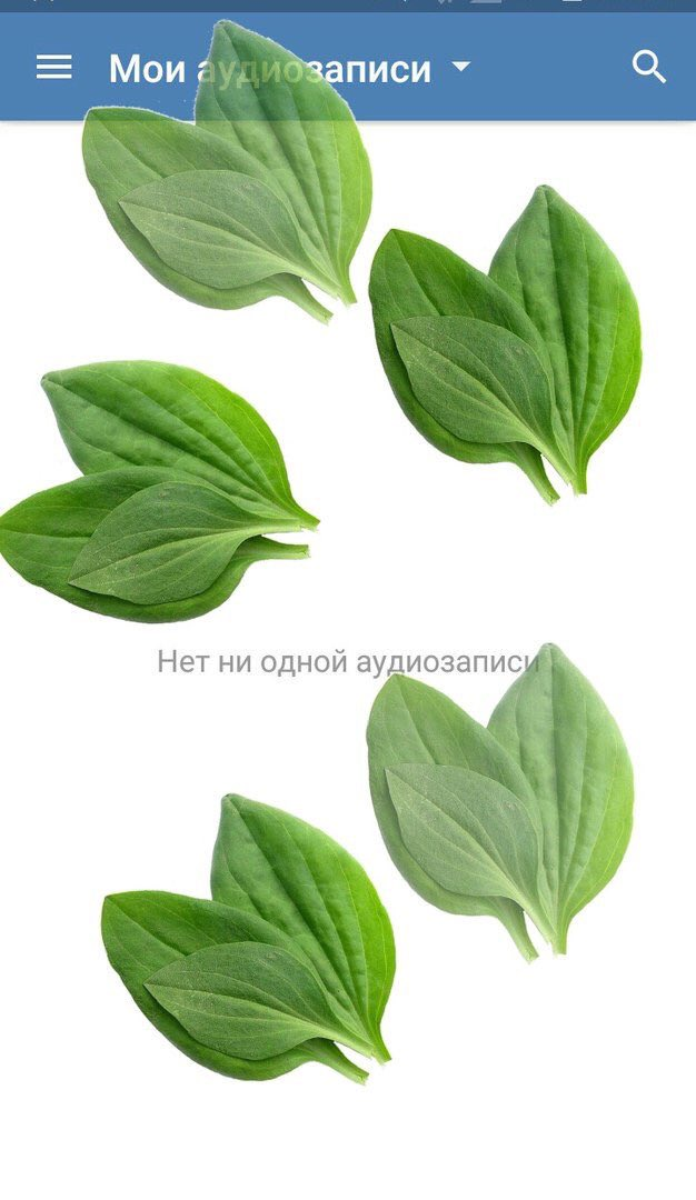 #вкживи: #вкживи