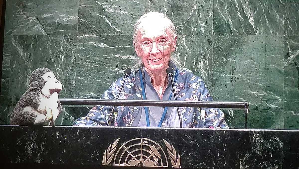 We need to learn to live in peace & harmony w/ nature & with one another -Messenger of Peace Jane Goodall #peaceday https://t.co/6od7r2NTPg