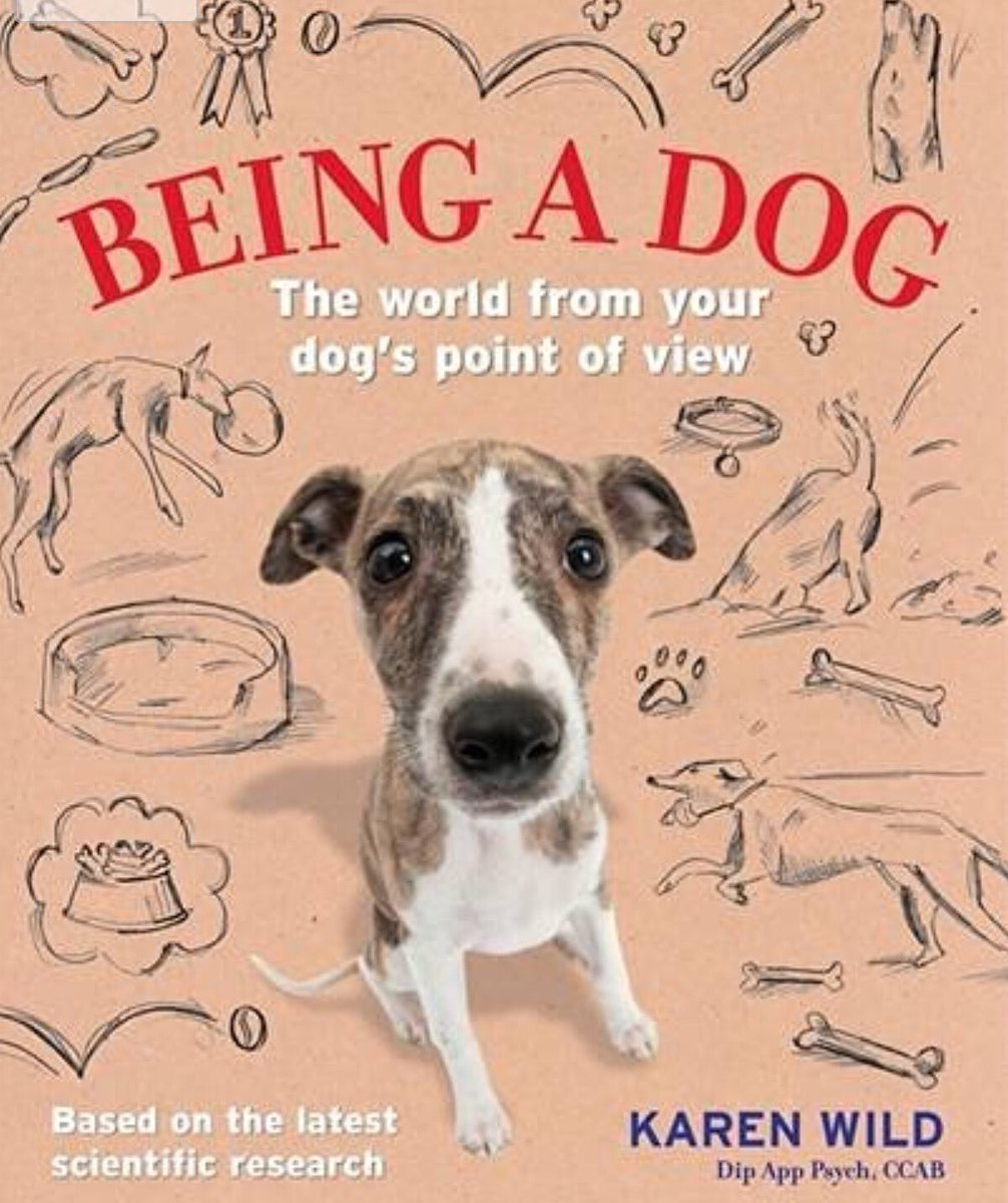 Ever wanted to know what your dog is thinking? Read my new book 'Being a Dog'!  https://t.co/lZ7ieAOgPm https://t.co/yxGtt0jUYm