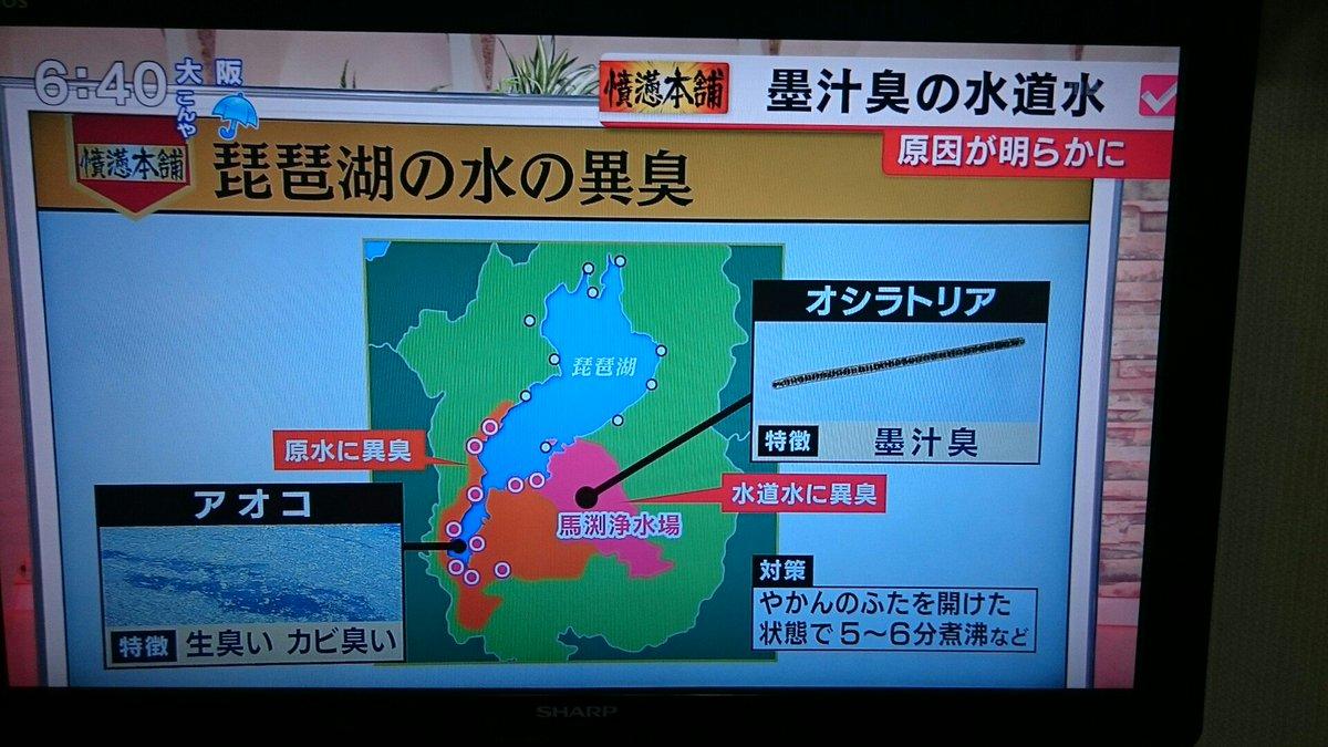 ニュースで琵琶湖の水道水から異臭がするというのやってたんだけど、このへんに住んでる人何人か知ってるんだけど大丈夫なの https://t.co/hry1p5A4Cy