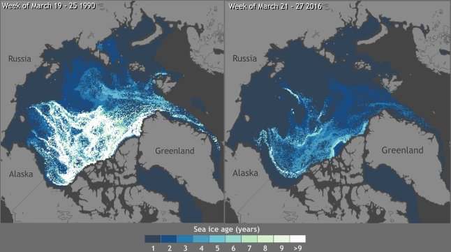 RT @ClimateReality: The Arctic is warming twice as fast as the rest of the world, on average https://t.co/oy0AhuvAZl #ClimateChange https:/…