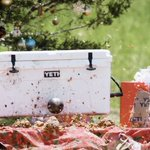 businessinsider: How brothers turned a nearly indestructible cooler, YETICoolers, into a half-billion-dollar brand… https://t.co/J18OKzEtwQ