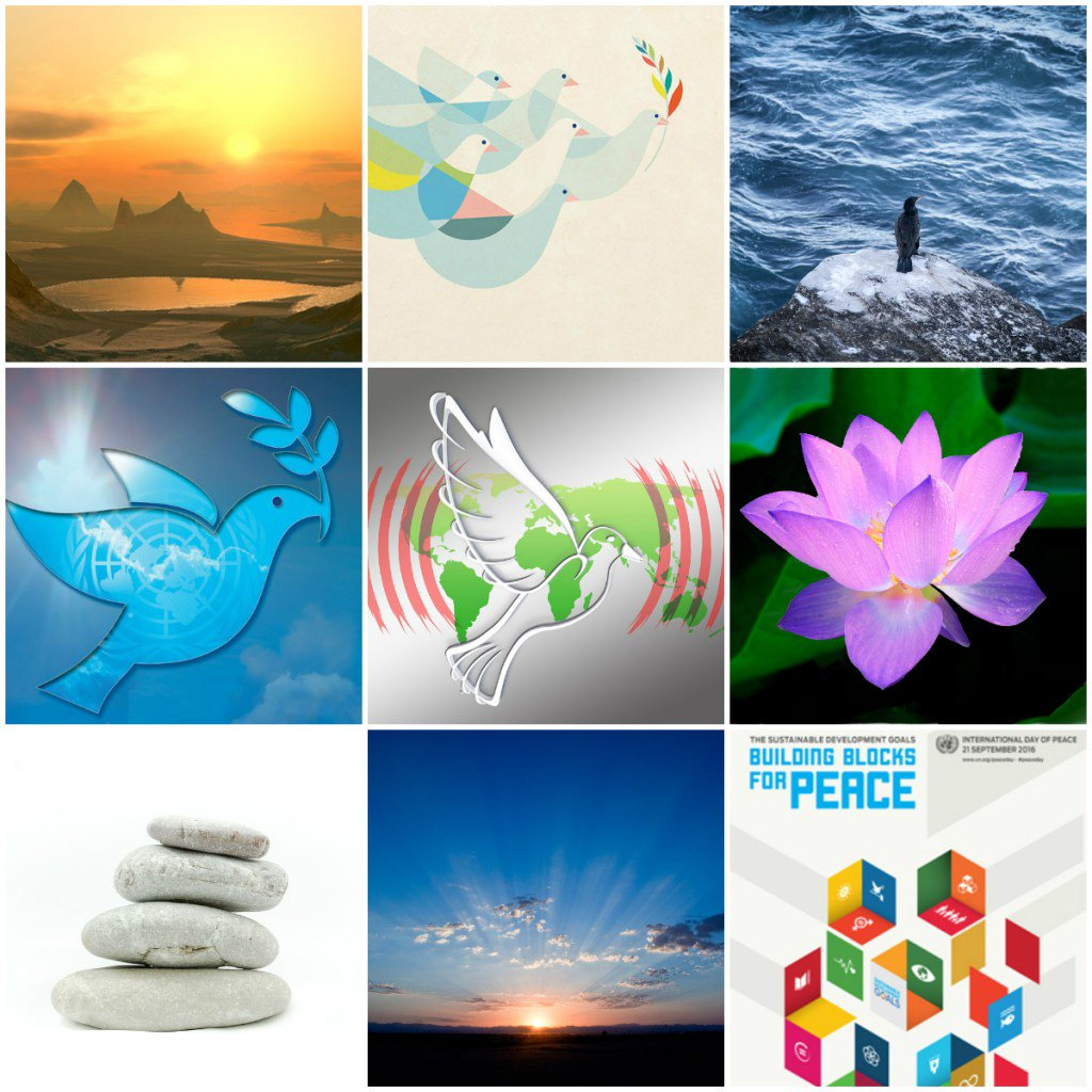 Motivation Mondays: PEACE & GRATITUDE https://t.co/N2gsn0hDU0 https://t.co/BuHCAAS0U3