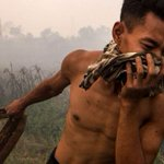 100,000 deaths from Indo fires