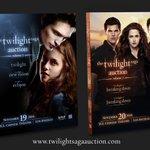 Pre-order your two-volume catalog for THE TWILIGHT SAGA Auction, in print October 24! https://t.co/o2GRkj26Ge https://t.co/5qpghbNFvv