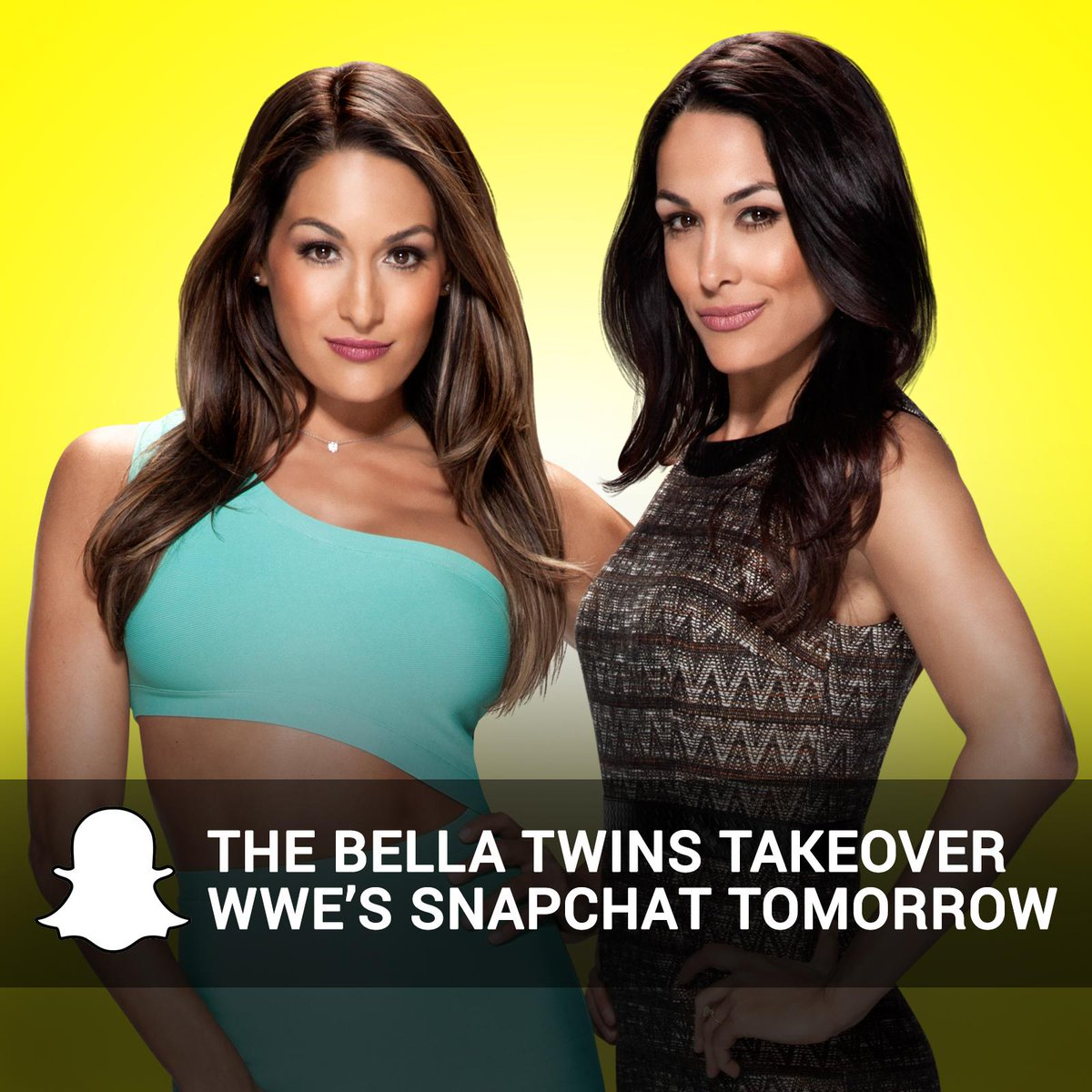 Snapchat The Bella Twins nudes (85 foto and video), Sexy, Fappening, Instagram, in bikini 2017