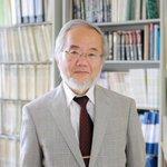 Japan's Ohsumi wins Nobel Prize in medicine