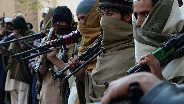 #Taliban: Taliban