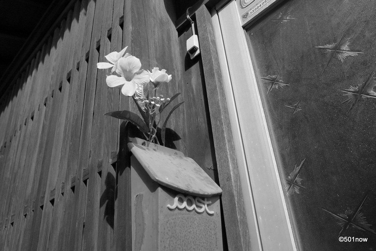 @501now: 『ポストに花を』#写真撮ってる人と繋がりたい#写真好きな人と繋がりたい#ファインダー越しの私の世界#写