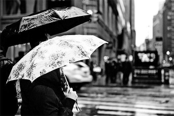 #صوت_المطر: #صوت_المطر