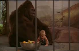 Baby's day out didn't kill harambe. https://t.co/DAG5F2bRcE